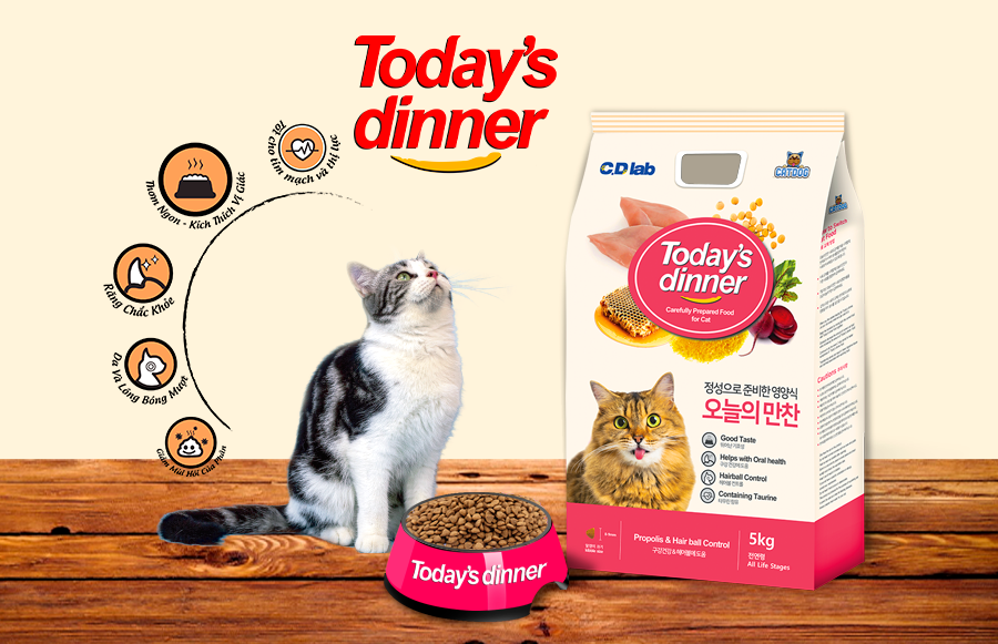 todays-dinner