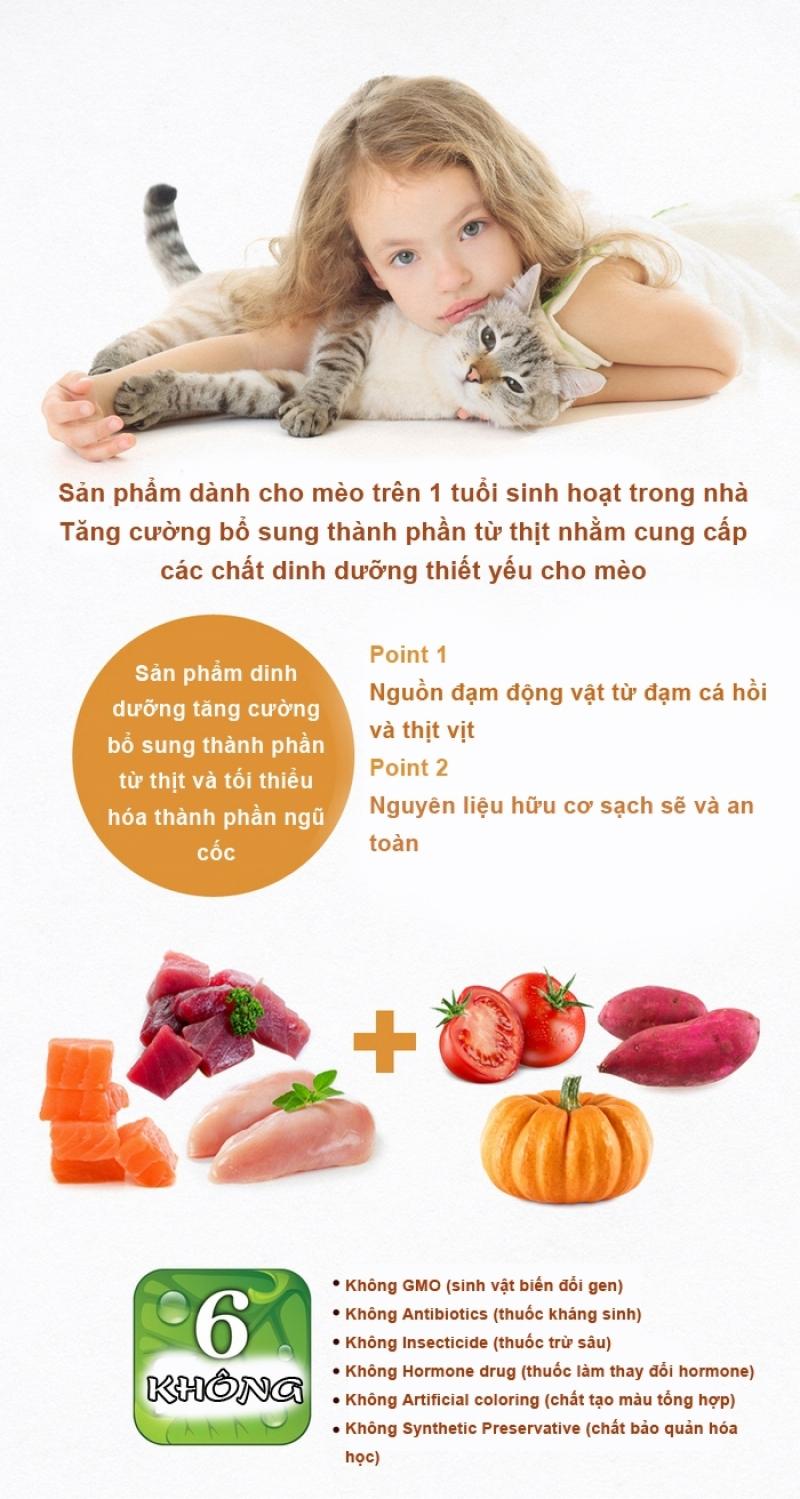 6-free-cat-adult2-1581499999.jpg