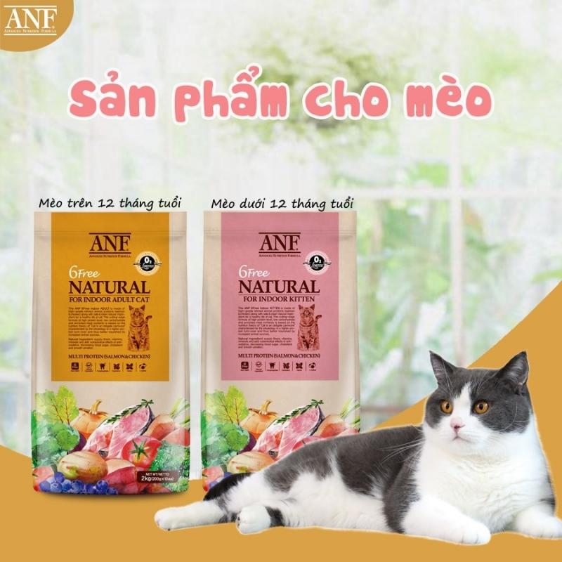 6free-cho-meo-1628074733.jpg