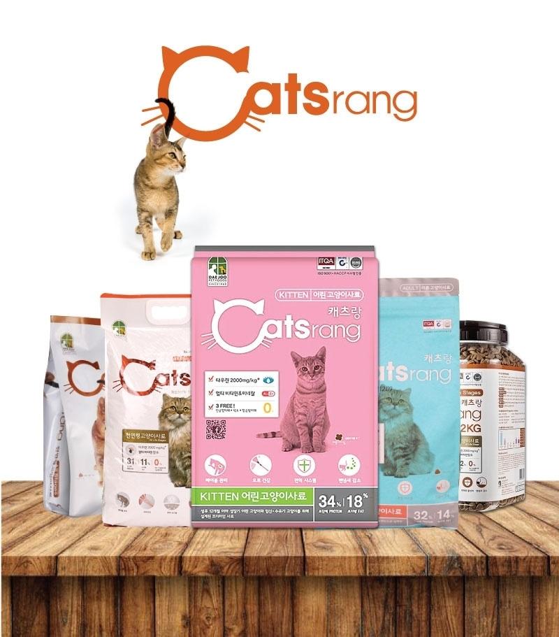 catsrang-kitten-1-1627926271.jpg