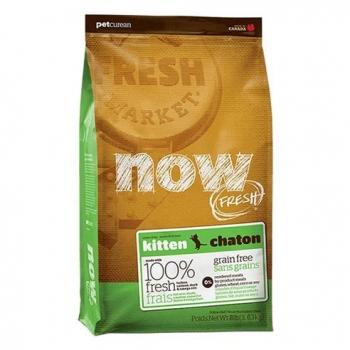 Thức ăn hạt cao cấp dành cho mèo con Now Fresh (nhập khẩu Canada)