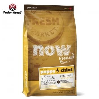 Thức ăn hạt cho chó con nhập khẩu Canada Now Fresh